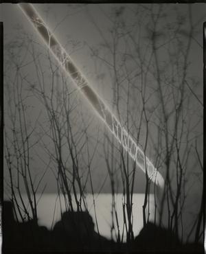 Sunburned GSP#555 (San Francisco Bay), 2012 Unique gelatin silver paper negative. 8 x 10 inches. © Chris McCaw