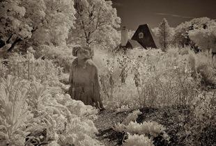 © Mildred Alpern