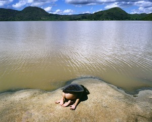 Turtle, 2013 © Scarlett Hooft Graafland. All images courtesy of Huis Marseille.