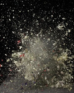 Blow Up: Untitled 07, 2007 © Ori Gersht, Mummery + Schnelle