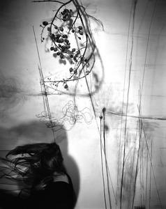 Branches, 2011 © Lauren Semivan, Bonni Benrubi
