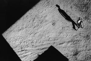 La sombra, 1962 © Alicia D'Amico, Galeria Vasari