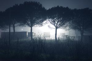 © Graziano Panfili
