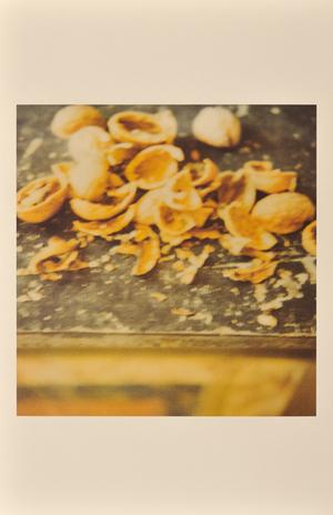 Nuts, Gaeta, 2004, © Cy Twombly
