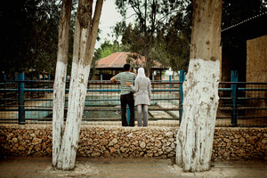 A young couple looking at a hippo in the zoo in Qalqiliya. April 2010 © Lars Håberg