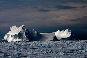 Floating Icebergs in Drift Ice © Camille Seaman