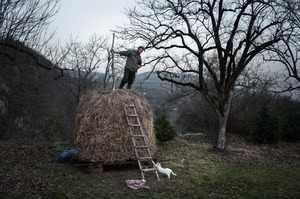 Farmer in his yard. Ptsirtskha village, Abkhazia. © Olga Ingurazova