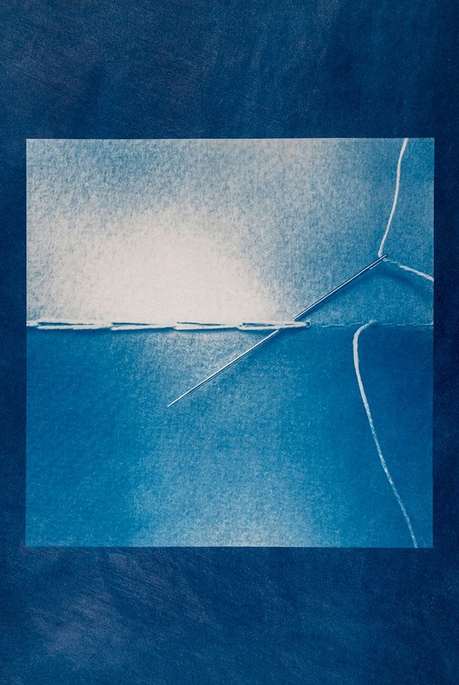 Cyanotype print made from smartphone digital image