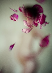 © Sjoukje van Gool, participating artist in LensCulture FotoFest Paris, 2013