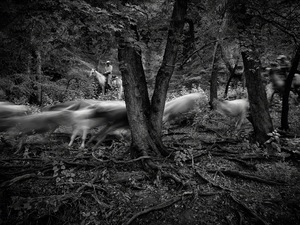 © Werner Segarra, participating artist in LensCulture FotoFest Paris, 2013