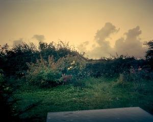 Home III © Joakim Eskildsen