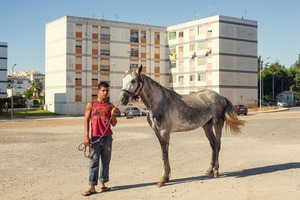 PORTIMAO, PORTUGAL A young Gypsy holds his horse after cleaning it. It's always striking to see working horses in an urban context. It's like different development ages coexisting in time. When I see this image, I can't help thinking about the painting Boy Leading a Horse, 1906, by Picasso. Some icons live long lives, and therefore coexist with their own future. © Carlos Spottorno