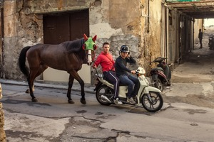 PALERMO, SICILY, ITALY Two young men dragging a horse on their scooter. The horse is wearing a mask because it's going to run in a race close to a highway. In Central Palermo there are a number of horses that are supposedly used for tourist attractions, while the reality is that there is a millionaire business of gambling at illegal races on asphalt. © Carlos Spottorno