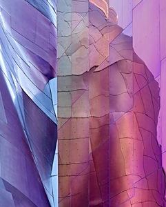 Shades Of Purple    Seattle, Washington    © Andrea Stone