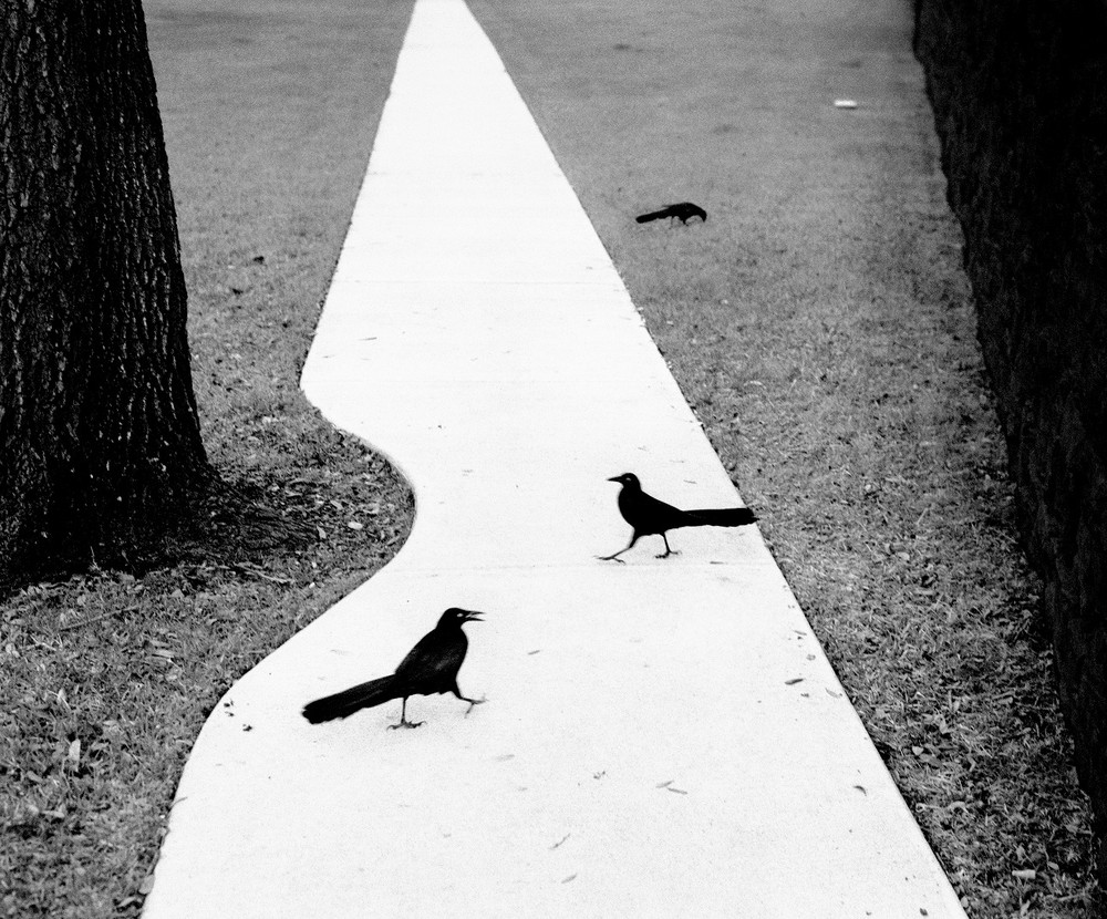 "From the photobook ""Here far away"" © Pentti Sammallahti"