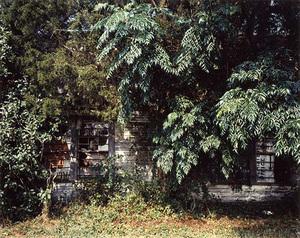 Palmist Building, Havana, Alabama, 1980