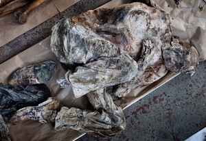 An excavated human body from the Prijedor (Tomasica) mass grave is seen at the Krajina Identification Project (KIP) Mortuary in Sanski Most where the bodies are been stored and examined. © Ole Elfenkämper