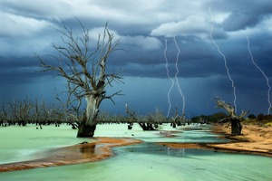 Graveyard. The surreal milky green water is a natural phenomenon caused by electromagnetic activity from lightning hitting the waters surface. The sky was charged and angry subjecting its wrath over the graveyard of dead trees in this normally very dry lakebed.<br> Honorable Mention Places © Julie Fletcher/National Geographic Photo Contest