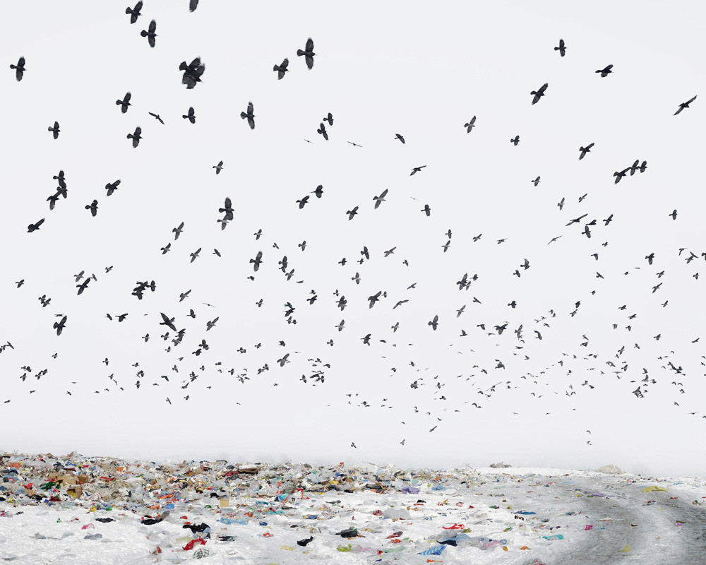 Dump (near Aiud, West Romania), 2012 © Tamas Dezso