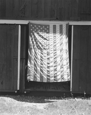 Flag, Fourth of July, 1997; gelatin silver print; courtesy the photographer and Pace/MacGill Gallery, New York; © John Szarkowski (Plate # 62)