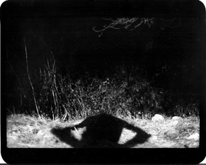 """""""Untitled"""" (Shadow #18), 2011"""