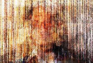 The Collective Glitch: Portrait