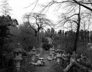 "Stone lanterns in the shrine just a few hundred meters outside of the exclusion zone. The scene has been left as it fell 2 and half years ago when the Great Tohoku earthquake first hit Japan. From the series ""Fragments/Fukushima"" © Kosuke Okahara"