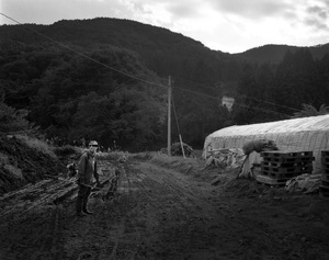 "In Naraha town, trees grow like crazy as no one is around to take care of the farmland. Some parts have become jungle-like. From the series ""Fragments/Fukushima"" © Kosuke Okahara"