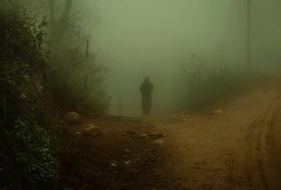 Himalaya Fog VII