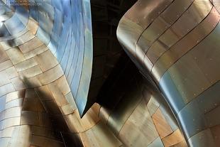 Gehry's Children #4 - © Andrew Prokos - http://andrewprokos.com