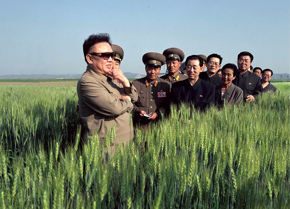 "looking at wheat—""Kim Jong Il Looking at Things"""