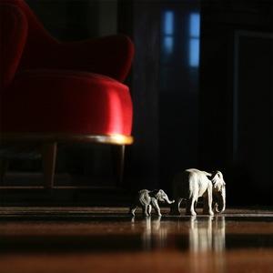 Domestic Elephants © Doris Mitsch