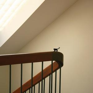 Domestic Monkey © Doris Mitsch