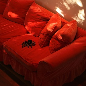 Domestic Tarantula © Doris Mitsch