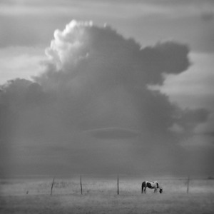 Storm Over Ossabaw © Anne Berry