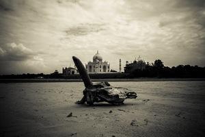 Avnish Kumar, India. Shortlist, Youth Competition. 2014 Sony World Photography Awards