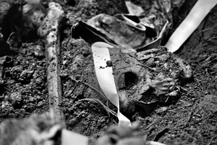 A skull lays in a recently opened grave. At the end of January, 135 bodies had been recovered from the exhumation at Comalapa. The number is expected in the end to be well over 200. © Victor Blue, 2004