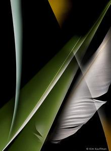 Confluence 3 © Kim Kauffman