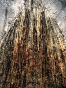 La Sagrada Familia © Pep Ventosa