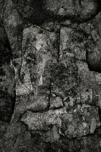 Rock Detail, Seawall, Maine © Alan Henriksen