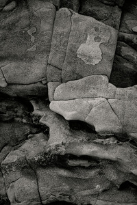 Rock Face, Otter Point, Acadia, Maine © Alan Henriksen