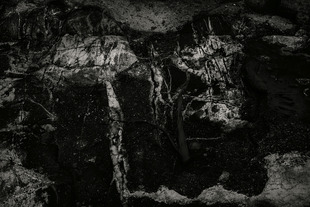 Rock Detail, Seawall, Maine © Alan Henriksen