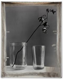 Nature Morte 10, 2012, Mixed Media on Silver Gelatin Print, 81 x 65 cm © Jeff Cowen