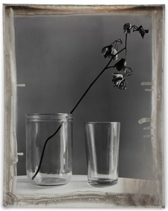 Nature Morte 10, 2012, Mixed Media on Silver Gelatin Print, 81 x 65 cm © Jeff Cowen