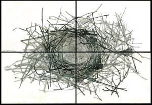 """Nest IV, 2010                                              24""""h x 36""""w x 1.5""""d                                         archival pigment prints & encaustic on panels                                                      © Christa Bowden"""