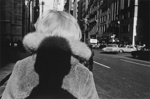 Carl Jacobs Fund, © 2006 Lee Friedlander. The Museum of Modern Art, New York