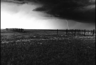 © George Webber  - Near Wardlow, Alberta, 1995