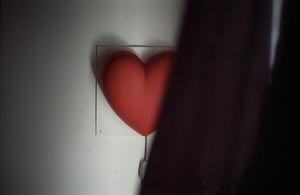 Plastic heart, Pandora's Secrets, London, UK, 2006, from <i>No Love Lost</i>. © Michael Grieve