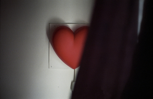 Plastic heart, Pandora's Secrets, London, UK, 2006, from <i>No Love Lost</i>. © Michael Grieve
