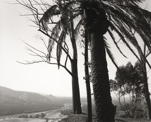 Edge of San Timoteo Canyon, Redlands, California © Robert Adams